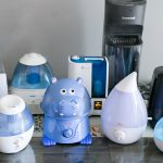 Considerable facts before placing the humidifier
