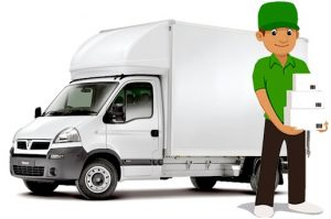 International Removalist Services in Sydney