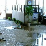 What To Do In Case Of Water Damage In Professional Premises?